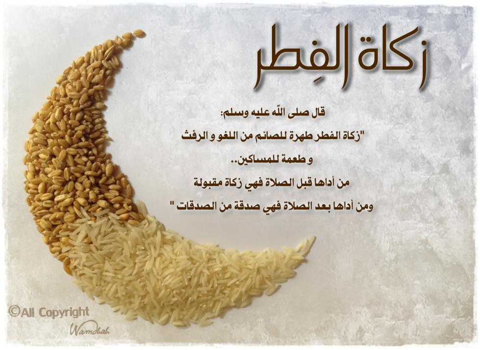 Zakat Al-Fitr (in Syria)(£4 each) مشروع زكاة الفطر في سورية by Nour Al-Sham Foundation fundraising photo 1
