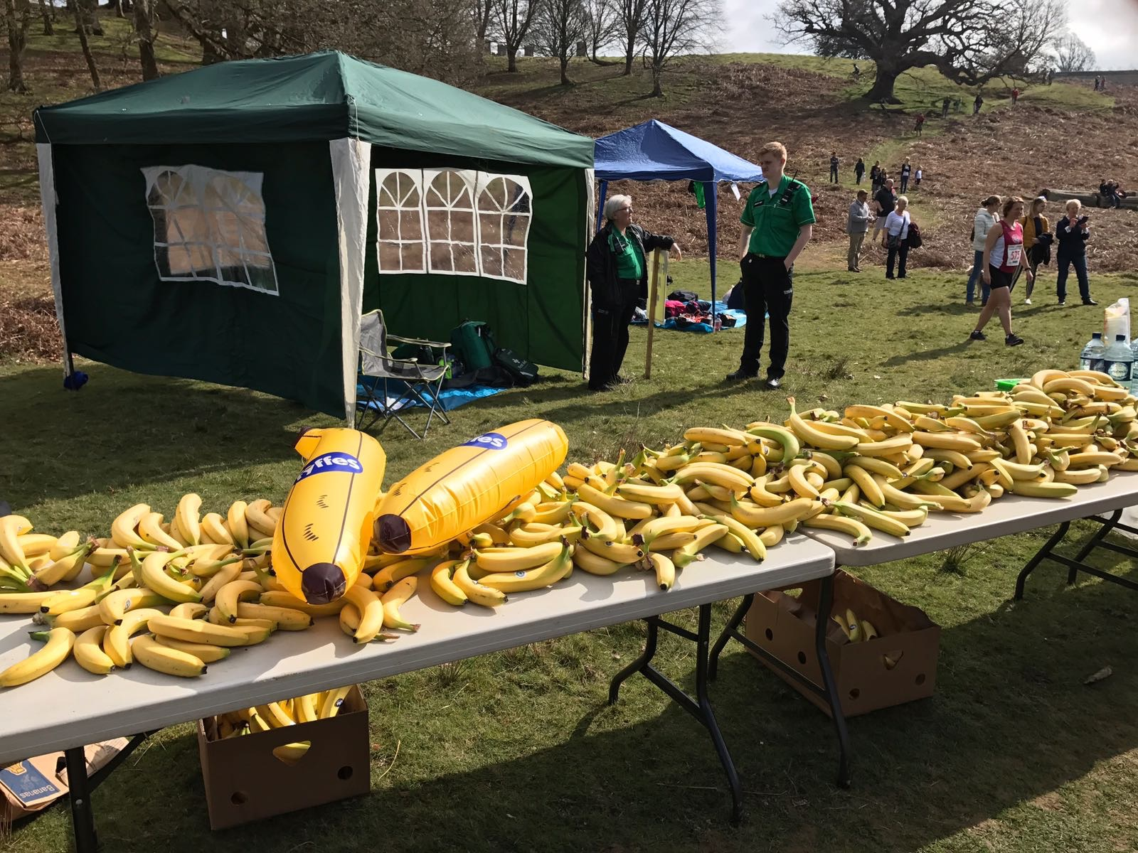 RUN in the PARK  8th April 2018 by Friends of Shelby Newstead fundraising photo 4