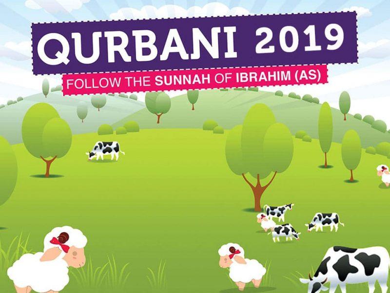 Qurbani in Syria (2019) (£130 Each) مشروع الأضحية في سورية by Nour Al-Sham Foundation fundraising photo 1