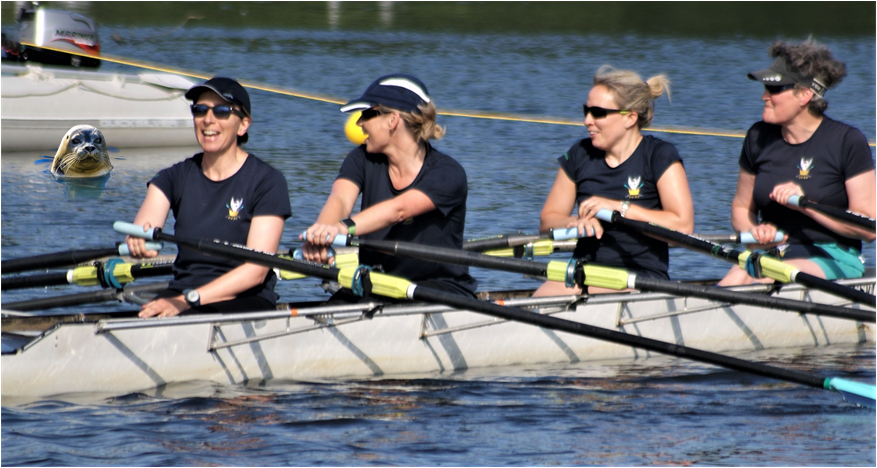 Community Rowing - Not as Posh as you Think! by City of Swansea Rowing Club fundraising photo 3