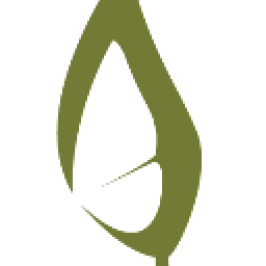 The Butterfly Tree logo