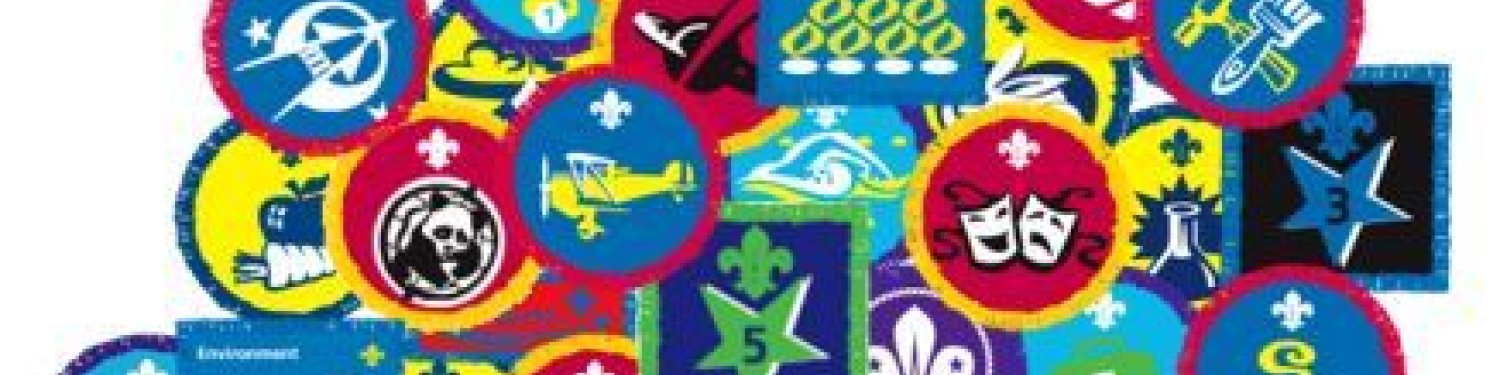 3Rd St Budeaux Scout Group logo