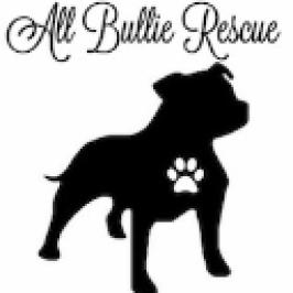 All Bullie Rescue logo