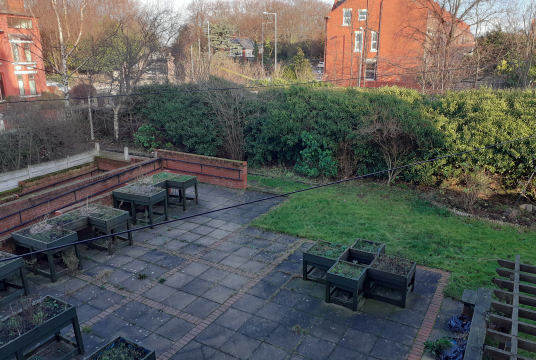 Community Garden by Bootle Christ Church Youth & Community Centre cover photo