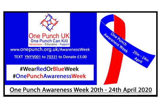 One Punch Awareness Week 2020 by One Punch UK United Ltd cover photo