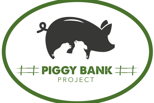 Piggy Bank Project by Empathy International cover photo