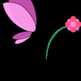 Saarah's Fund logo