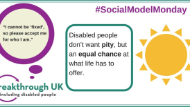 Mentor an isolated disabled person and connect to new activities