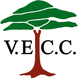 Valley End Cricket Club logo