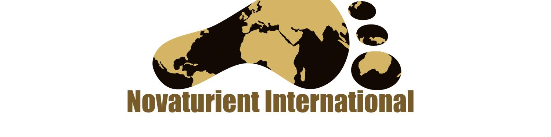 Novaturient International logo