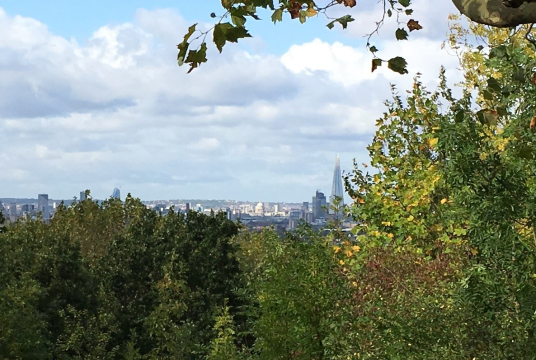 Our Ten New Parks for London campaign by CPRE London cover photo