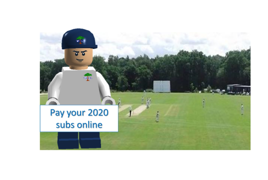 2020 Membership by Valley End Cricket Club cover photo
