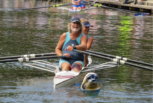 Community Rowing - Not as Posh as you Think! by City of Swansea Rowing Club cover photo
