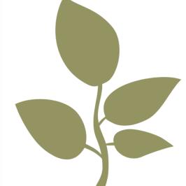 Kapadia Education Foundation logo