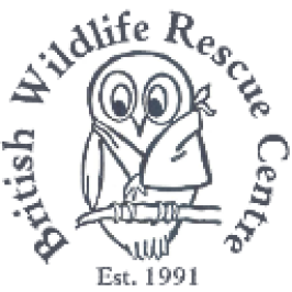 The british wildlife rescue centre logo