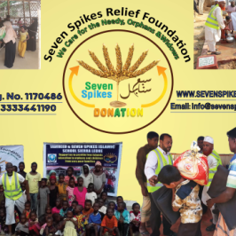 Seven Spikes Relief Foundation logo