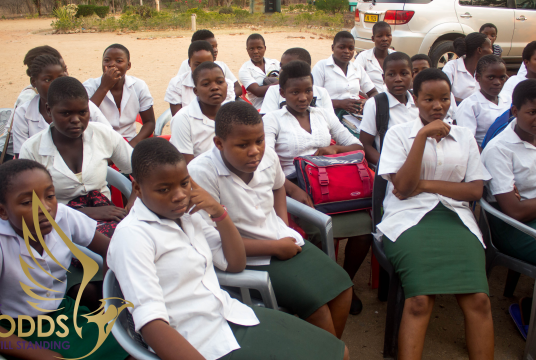 Malawi Secondary School Building Project by AOS UK cover photo