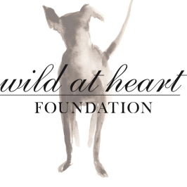 Wild at Heart Foundation logo